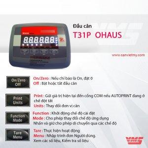 Đầu cân T31P</br> Ohaus-USA </br>
